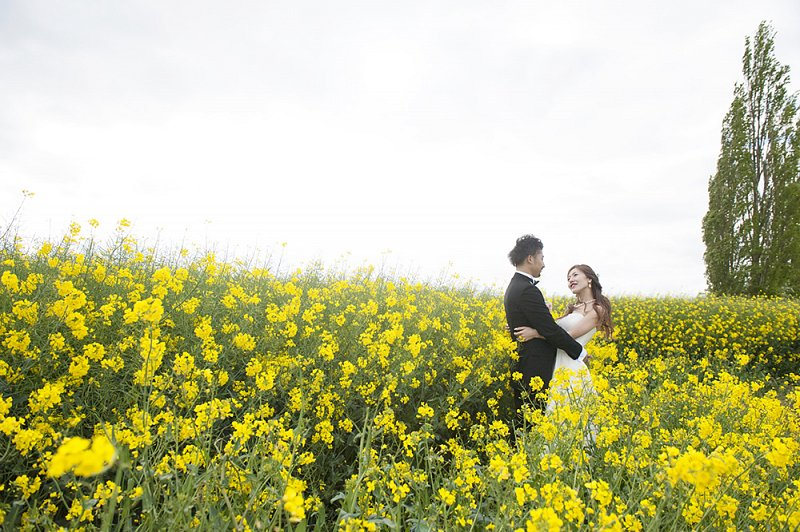 a couple in the field